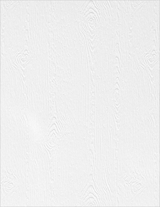 Simon Says Stamp WOODGRAIN CARDSTOCK WHITE 111 LB