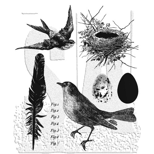 Tim Holtz Cling Rubber Stamps BIRD FEATHER cms180 Preview Image