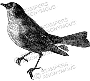 Tim Holtz Rubber Stamp BIRD SKETCH Stampers Anonymous V1-2301 zoom image