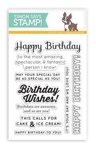 Simon Says Clear Stamps BIRTHDAY MESSAGES SSS101391