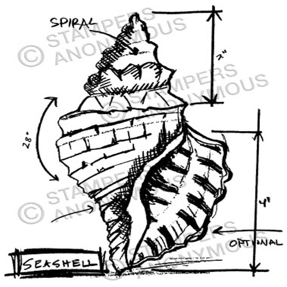 Tim Holtz Rubber Stamp SEASHELL SKETCH P1-2355 * zoom image
