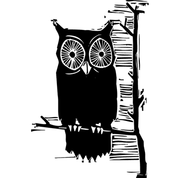 Tim Holtz Rubber Stamp CARVED OWL Stampers Anonymous M3-2408