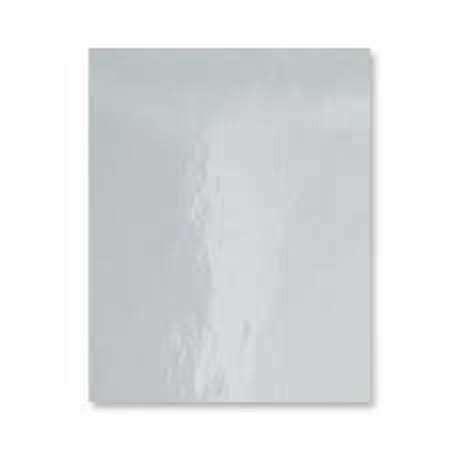 Bazzill SILVER Foil Heavy Weight 8.5 x 11 Cardstock 03156* Preview Image