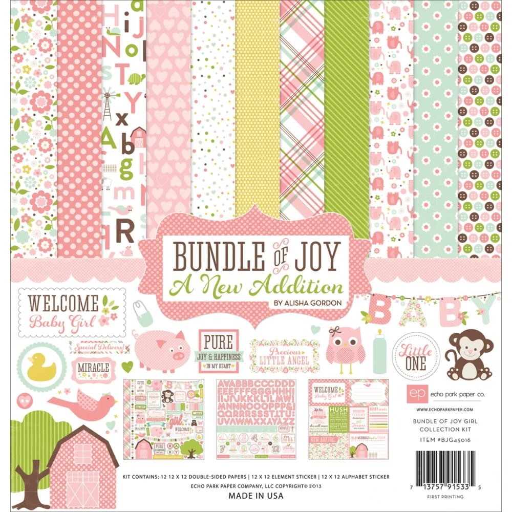 Echo Park BUNDLE OF JOY GIRL 12 x 12 Collection Kit A New Addition BJGT79016 zoom image