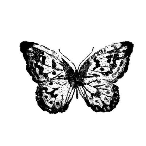 Tim Holtz Rubber Stamp WATERCOLOR BUTTERFLY 2 Stampers Anonymous G2-2566* Preview Image