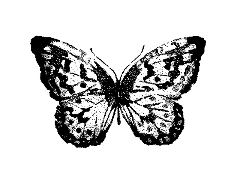 Tim Holtz Rubber Stamp WATERCOLOR BUTTERFLY 2 Stampers Anonymous G2-2566* zoom image