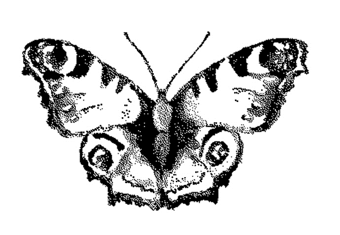 Tim Holtz Rubber Stamp WATERCOLOR BUTTERFLY 3 Stampers Anonymous G2-2567 zoom image