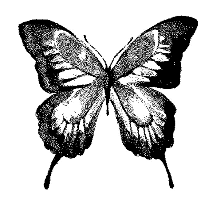 Tim Holtz Rubber Stamp  WATERCOLOR BUTTERFLY 1 Stampers Anonymous J1-2571 zoom image