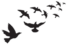 Tim Holtz Rubber Stamp THE BIRDS M1-1252 Preview Image