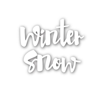 Simon Says Stamp WINTER SNOW Wafer Die SSSD111537