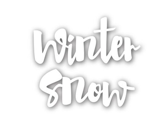 Simon Says Stamp WINTER SNOW Wafer Die SSSD111537 zoom image