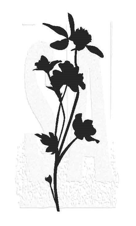 Tim Holtz Rubber Stamp WILDFLOWER 8 Stampers Anonymous J3-2807* zoom image