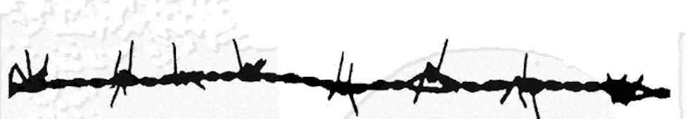 Tim Holtz Rubber Stamp BARBED WIRE Stampers Anonymous U6-1348 zoom image