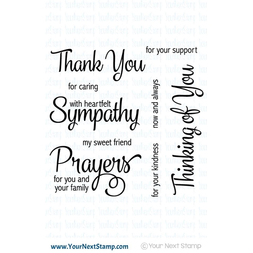 Your Next Stamp WHATNOT SENTIMENTS SEVEN Clear CYNS400 Preview Image