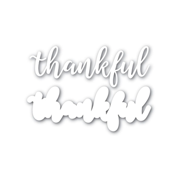 Simon Says Stamp THANKFUL Shadow Wafer Dies SSSD111625