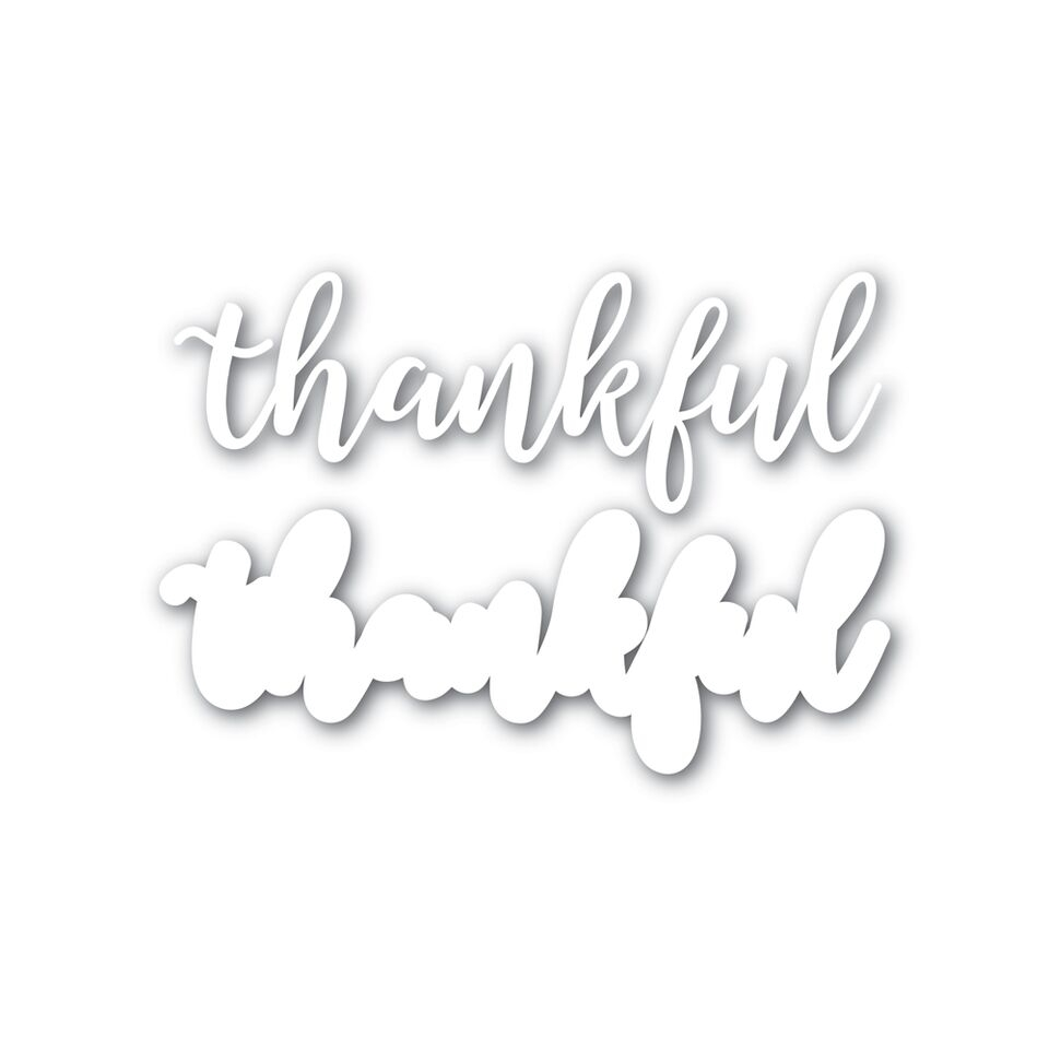 Simon Says Stamp THANKFUL Shadow Wafer Dies SSSD111625 zoom image