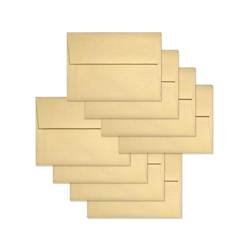 Simon Says Stamp Envelopes METALLIC ECRU SSSE40