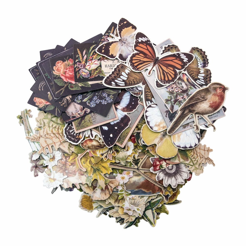 Tim Holtz Idea-ology BOTANICAL Layers TH93554 zoom image
