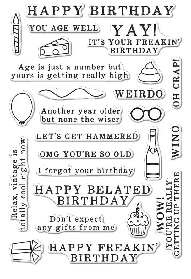 Hero Arts Clear Stamps IRREVERENT BIRTHDAY MESSAGES CM143 zoom image