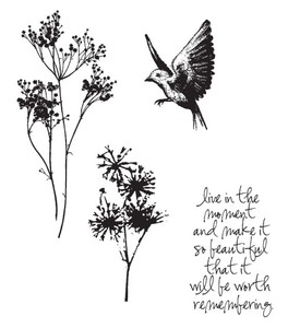 Tim Holtz Cling Rubber Stamps NATURE'S MOMENTS Stampers Anonymous CMS001* Preview Image