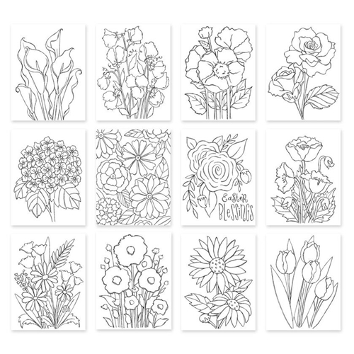 Simon Says Stamp Suzy's IN FULL BLOOM Prints SZIFB12 New Beginnings Preview Image