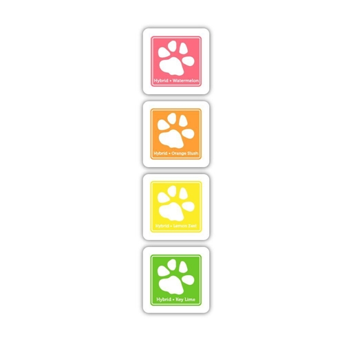 Simon Says Stamp Hybrid Ink Pad Cube Set FRESH FRUIT FF12 Preview Image