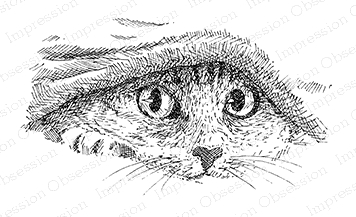 Impression Obsession Cling Stamp KITTY UNDER COVERS G2537 Preview Image
