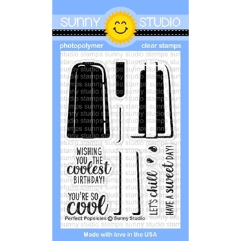 Sunny Studio PERFECT POPSICLES Clear Stamp Set SSCL-162
