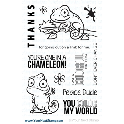 Your Next Stamp ONE IN A CHAMELEON Clear CYNS548 Preview Image