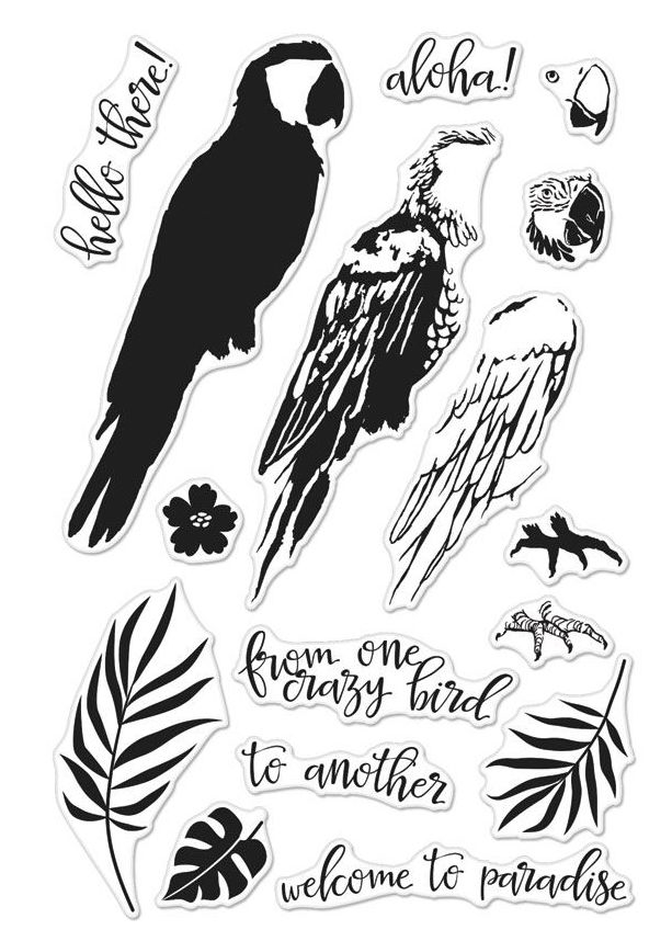 Hero Arts Clear Stamps Color Layering PARROT CM164 zoom image