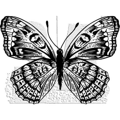 Tim Holtz Rubber Stamp BUTTERFLY 10 Stampers Anonymous J1-2985 Preview Image