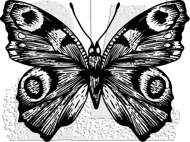 Tim Holtz Rubber Stamp BUTTERFLY 9 Stampers Anonymous J1-2984* zoom image