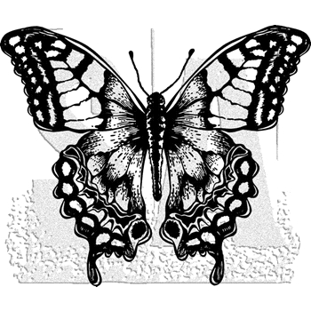 Tim Holtz Rubber Stamp BUTTERFLY 6 Stampers Anonymous H2-2979