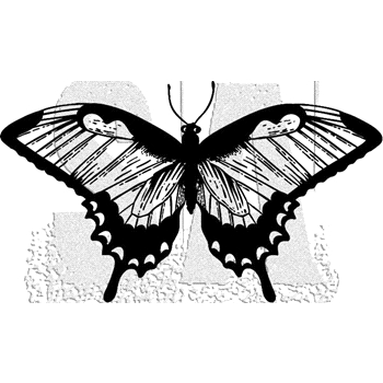 Tim Holtz Rubber Stamp BUTTERFLY 4 Stampers Anonymous J2-2986