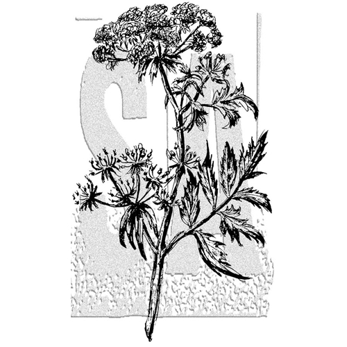 Tim Holtz Rubber Stamp ILLUSTRATED FLOWER 2 Stampers Anonymous P5-2990* Preview Image