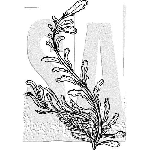 Tim Holtz Rubber Stamp SEAWEED Stampers Anonymous J2-3031 Preview Image