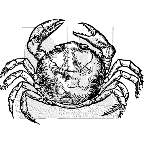 Tim Holtz Rubber Stamp CRAB K1-3034 Preview Image