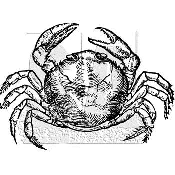 Tim Holtz Rubber Stamp CRAB K1-3034