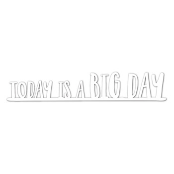 Simon Says Stamp BIG DAY Wafer Dies SSSD111729 One Of A Kind