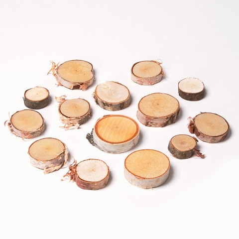 Natural WHITE BIRCH Wood Pieces Medium Preview Image