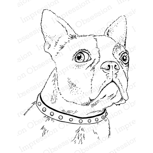 Impression Obsession Cling Stamp BOSTON TERRIER F7901 Preview Image