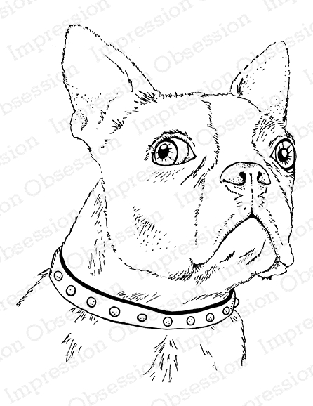 Impression Obsession Cling Stamp BOSTON TERRIER F7901 zoom image