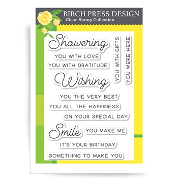 Birch Press Design WISHING YOU THE BEST Clear Stamps cl8127*