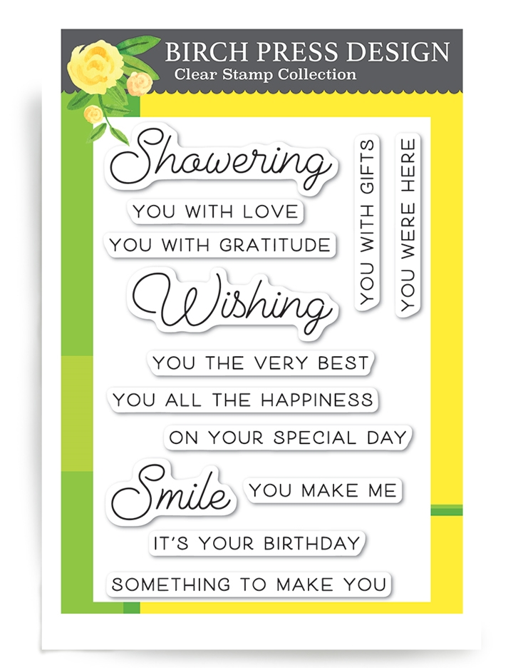 Birch Press Design WISHING YOU THE BEST Clear Stamps cl8127* zoom image
