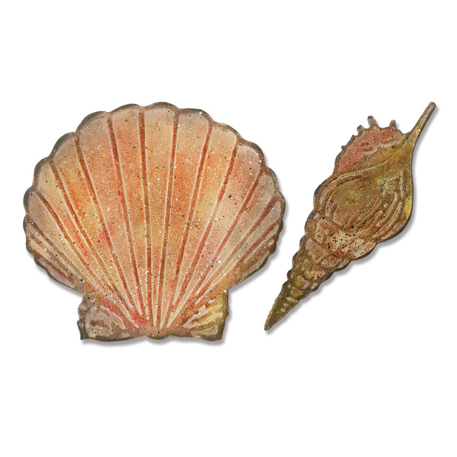 Tim Holtz Sizzix SEASHELLS Bigz Die With Texture Fades 662706 zoom image