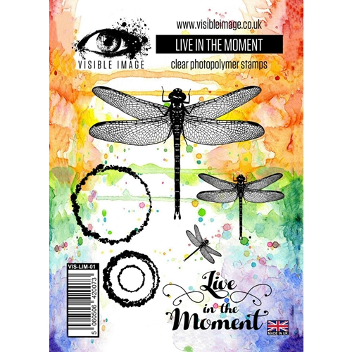 Visible Image LIVE IN THE MOMENT Clear Stamp Set VIS-LIM-01 Preview Image
