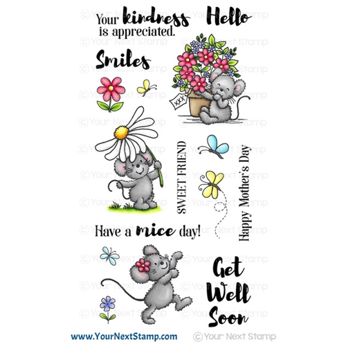 Your Next Stamp FLOWERS AND SMILES Clear cyns640* Preview Image