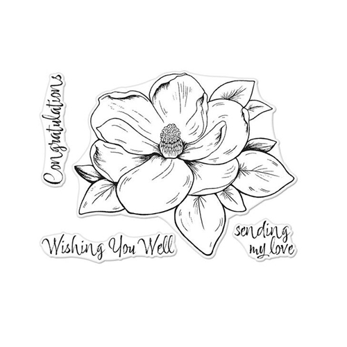 Hero Arts Florals Clear Stamp MAGNOLIA CM261 Preview Image