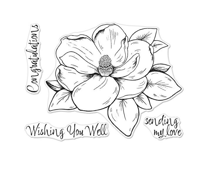 Hero Arts Florals Clear Stamp MAGNOLIA CM261 zoom image