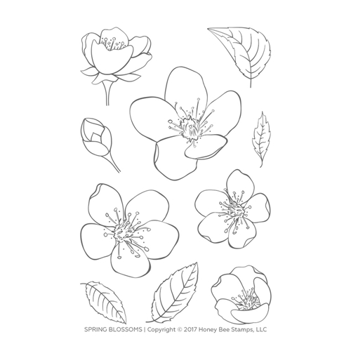 Honey Bee SPRING BLOSSOMS Clear Stamp Set hbst-101* Preview Image